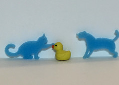 Bert 164/366 (zamburak) Tags: yellow duck bert safari sponge duckies oneobject365daysproject goodluckminis