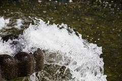 Nordpark Dsseldorf (Rolf Piepenbring) Tags: fountain springbrunnen dsseldorf nordpark wasserspiel