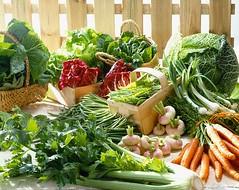 42-16249470 (hoabangkute) Tags: stilllife food nobody vegetable fresh lettuce cabbage produce variety abundance celery pods stringbeans leafyvegetable