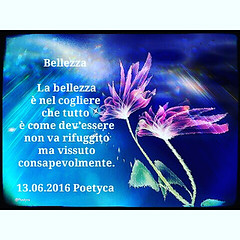 Bellezza (Poetyca) Tags: featured image immagini e poesie sfumature poetiche poesia