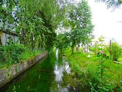 DSC04987 (Mr.J.Martin) Tags: tusslingbavaria bayren germany gapp garden canal village church wildflowers