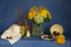 Still life flowers and fruit with blue background. (Phyllis Freels) Tags: flowers blue stilllife glass yellow fruit cherry basket availablelight indoor chick mums grapes vase hydrangea tabletop liliy stilllifephotoart phyllisfreels