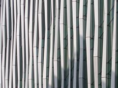 white bamboo (Cosimo Matteini) Tags: london architecture pen olympus victoria m43 mft ep5 whitebamboo cosimomatteini mzuiko45mmf18 novavictoria