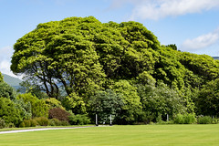 Jardin du château d'Inveraray