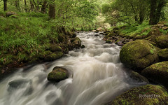 Summer Flow (http://www.richardfoxphotography.com) Tags: river stream rapids devon granite dartmoor dart riverdart flowingwater dartmoornationalpark dartmoorlandscape