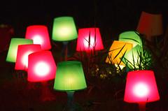 light bulbs in nature now (elmar theurer) Tags: light bulbs lampen natur art kunst artwork dasfest karlsruhe
