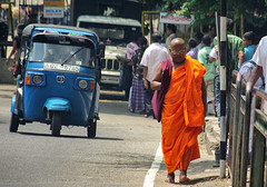 Buddhist monks in Sri Lanka (Sallyrango) Tags: street people orange asian asia streetlife buddhism streetscene taxis monks tuktuk srilanka colourful buddhistmonk srilankanpeople orangerobes