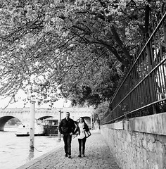 Walking along the Saine (Purple Field) Tags: street bridge bw paris france 120 6x6 tlr film monochrome analog rolleiflex river square kodak 400tx medium   f28  schneider kreuznach  80mm   28f  xenotar         stphotographia x