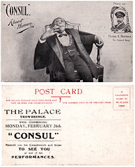 Consul the Chimpanzee at The Palace Trowbridge (Trowbridge Postcards & Ephemera) Tags: postcard palace chimpanzee wiltshire consul trowbridge