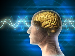 Brain waves (satori-sun.com) Tags: blue light people italy men smart silhouette illustration training relax idea wire pattern adult state head sleep background think profile creative wave delta brain science beta line beam medical intelligence health human mind anatomy frame data meditation eeg awake outline alpha relaxation stress signal information strategy mental psychology ecg theta frequency
