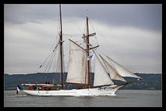 La Belle Poule (shellorz) Tags: seine tallship schooner lehavre vieuxgrement golette baiedeseine hunier paimpolaise armada2013