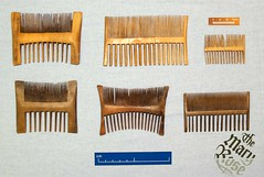 combs (MaryRoseMuseum) Tags: history archaeology rose wooden foto personal object mary conservation historic human friday comb artefact dockyard maryrose haircare artefacts toiletries hygeine fotofriday