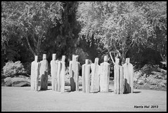 Let The Trees Live Another Life - Van Dusen XP5410e (Harris Hui (in search of light)) Tags: bw sculpture canada art vancouver blackwhite fuji bc richmond infrared fujifilm digitalbw vandusen juming vandusengarden sculptureart woodsculpture  35mmf14 michaeldennis councilofelders invisiblelight r72filter infraredbw digitalrangefinder hoyar72filter fujinonlens xpro1 harrishui xphotographers vancouverdslrshooter fujixpro1 retrostylecamera cameraforstreetphotographers fujixcamera letthetreesliveanotherlife touchwoodsculptureexhibition taiwanesesculptor