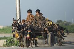 on the crossroads (Abdul Qadir Memon ( http://abdulqadirmemon.com )) Tags: pakistan abdul islamabad qadir memon 2013 sabzimandi