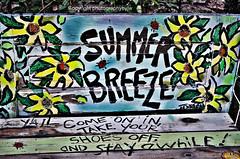 Catch a Summer Breeze (Photographybyjw) Tags: wood flowers blue summer color yellow bench found this hand very painted rustic north southern carolina catch cheerful breeze photographybyjw