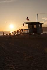 Sunset in Santa Monica, California (john cottle) Tags: life california santa sunset sun beach beautiful birds silhouette sand flag guard lifeguard hut monica stunning