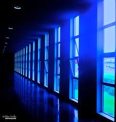 Bleu (Blas Torillo) Tags: blue windows building apple azul méxico mexico edificio bleu ventanas puebla iphone professionalphotography appleiphone iphone4 fotografíaprofesional mexicanphotographers fotógrafosmexicanos appleiphone4photostream