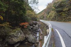 early autumn Hyogo (caz76KOBE) Tags: japan eos pizza sanda hyogo  tanba  eflens eos6d canonprimelens  ef24mmf14liiusm canonef24mmf14lusm