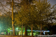 Forest Lights (christian speck) Tags: trees light lightpainting night 35mm schweiz switzerland suisse sony lausanne arbres lumiere nuit rx1