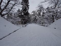 P1120663 (prelude2000) Tags: winter snow castle japan aomori hirosaki