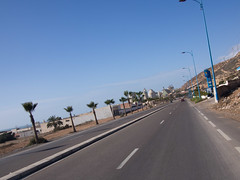 Hawk (gfdagfavf) Tags: road street fish plant lamp lines palms factory power morocco avenue markings moroccon taghazout