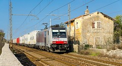 186.282 (atropo8) Tags: train nikon italia merci zug cargo locomotive treno freight trieste rtc ekol 186282 railtractioncompany d7000