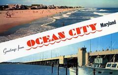 Greetings from Ocean_City MD (Edge and corner wear) Tags: ocean city beach vintage pc md postcard sandy maryland atlantic chrome card greetings