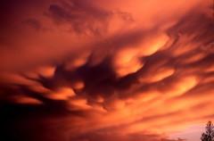 weer thuis, onweerwolken (mammatus)  bij avondzon, Amsterdam 2002 (wally nelemans) Tags: 2002 sunset amsterdam clouds zonsondergang wolken backhome mammatus weerthuis onweerslucht