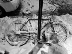IMG_0409 (joshdudley1) Tags: snow storm bike stranded snowbound immobilized immobile