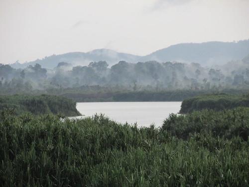 Lac Chini, Malaisie