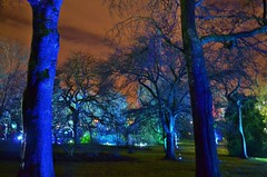 The Electric Gardens (Michelle O'Connell Photography) Tags: show park uk trees nature lights glasgow victorian eerie lightshow westend greatwesternroad botanicgardens hyndland queenmargaretdrive lightfestival glasgowbotanicgardens nightshow westendfestival winterfestival glasgowscotland lotteryfunded lightgardens michelleoconnellphotography glasgowbotanicgardenslights kibblepalce theelectricgardens