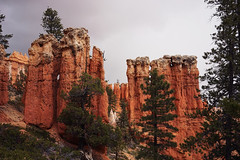 Peek-A-Boo Loop (labrewin) Tags: nature zeiss 35mm outdoors utah sony brycecanyon nationalparks sedimentary a7 hoodoos clou peekabooloop fe35mm28