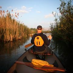 Sunrise Paddle (Michael Mitchener) Tags: sunrise paddle canoe lakeontario nessie