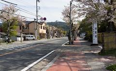 DSC07471 (Ustulo) Tags: japan spring ise iseshi