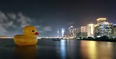 metropolis (acha191) Tags: bridge sky cloud tower water statue night canon eos gold duck rubber mandarin macau oriental wynn mgm f4 acha encore lapse vibrance 6d 1740l taipa acha191 acha2016