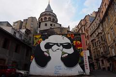 Panda Boss (amymorc) Tags: travel turkey istanbul backpacking cappadocia goreme kapadokya