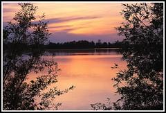 Crpuscule sur la Garonne (Les photos de LN) Tags: nature lumire couleurs beaut soir garonne reflets berges fleuve vgtation nuances srnit aquitaine rives