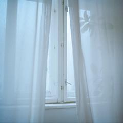 (Christoph Hofbauer) Tags: window autumn cold home indoor still calm fragile fogy dizzy hazy misty rolleicord vb 6x6 mediumformat mittelformat analog portra kodak 160 room