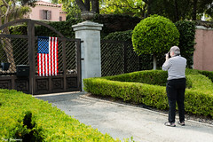 Capture the flag (Thad Zajdowicz) Tags: people person woman wife family photographer meta lightroom canon eos 5dmarkiii dslr digital color green red white blue flag americanflag oldglory starsandstripes colour light shadow lines zajdowicz pasadena california outside outdoor plant garden path driveway ree yard topiary tree