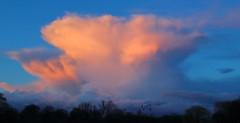 Potential energy (mikkelfrimerrasmussen) Tags: sunset cloud storm energy himmel skyer anvil solnedgang bl torden energi ambolt potentiel
