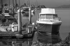 """Morning Boat at Berkeley Marina"" (milmonfharrison) Tags: california berkeley sfbayarea 50mmf18"