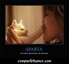 Animales (Comparte Humor) Tags: mujer humor gatos gato animales boca imagenes mujeres mascota mascotas graciosas risas bocas aparta apartar apartando playstore compartehumor