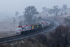 "2016-06-24 John Holland 48s34-48s35-48s36 Sodwalls 8M46 (Dean ""O305"" Jones) Tags: winter snow west holland train john au main rail australia line alpine maintenance nsw works newsouthwales locomotive snowfall ballast alco dl351 sodwalls 48s34 48s35 48s36 8m46"