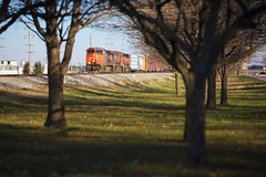 (CentralILRailfan) Tags: railroad trees winter sun cold america cn train ic illinois midwest central freezing railway sunny rr canadian il national frame onarga mid freight canadiannational gilman mainline of