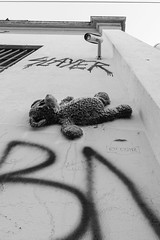 Newtown2016-5 (mekiaus) Tags: building outdoor sony sydney streetphotography australia teddybear nsw newtown a6000