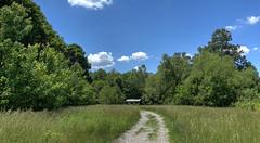 Howell Park (djh644) Tags: trees sony trail hdr howellpark photomatix rx100m4