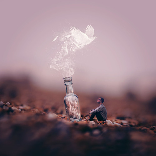 Messenger In A Bottle
