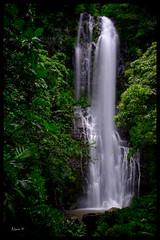 Wailua Falls, Maui (al_great1) Tags: wailuafalls mauihawaii