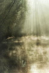 0343 Magic Lake (Hrvoje Simich - gaZZda) Tags: morning trees mist lake reflection water misty fog forest sunrise nikon magic croatia silouhette nikond200 subeams borovik sigma17702845 gazzda hrvojesimich