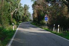 A 60 (zToRAz) Tags: tora nikon d3300 route ruta carretera road turn curva sign seal arbol rbol tree green verde 38mm